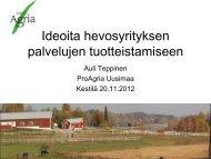 Rakenna houkutteleva paketti - ideoita ... - ProAgria Oulu
