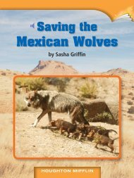 Lesson 10:Saving the Mexican Wolves