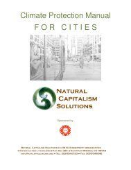 Downloads - Natural Capitalism Solutions