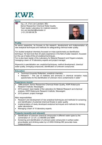 Name Profile Education Experience record Projects (recently and ...