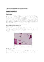 Tema 23. Géneros Haemophilus y Gardnerella ... - micromadrid