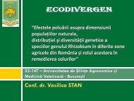 Conf. dr. Vasilica STAN
