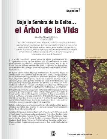 Especies Bajo la Sombra de la Ceiba... - Revista El Mueble y La ...