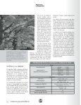 Especies Bajo la Sombra de la Ceiba... - Revista El Mueble y La ... - Page 2