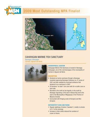 Cahayagan Marine Fish Sanctuary - Oneocean.org
