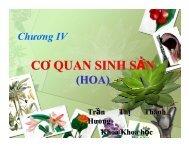 Chuong 4 (Hoa).pdf