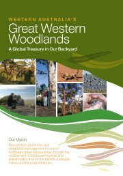 Great Western Woodlands