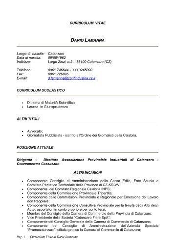 Curriculum vitae DARIO LAMANNA - CCIAA di Catanzaro - Camera ...