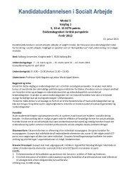 Valgfag 1 - Kandidatuddannelsen i Socialt Arbejde - Aalborg ...