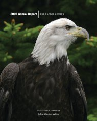 2007 Annual Report The Raptor Center - University of Minnesota ...