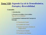 Tema VIII: Segunda Ley de la Termodinámica, Entropía y ...