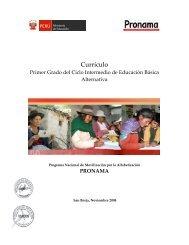 CURRICULO CACE-2008 con firma