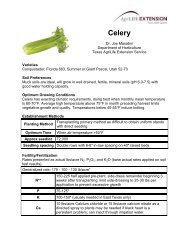 Celery | Commercial and Specialty Crop Guides - Aggie Horticulture