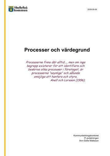 Projektbeskrivning (pdf, nytt fönster) - Skellefteå kommun