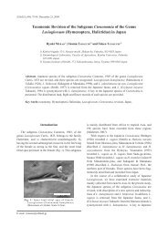 Taxonomic Revision of the Subgenus Ctenonomia of the Genus ...