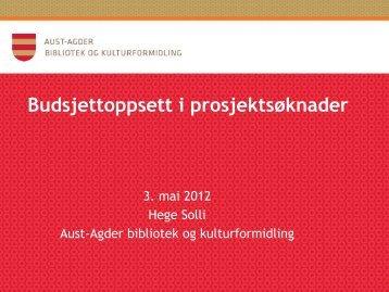 Budsjettoppsett i prosjektsøknader - Aust-Agder fylkeskommune