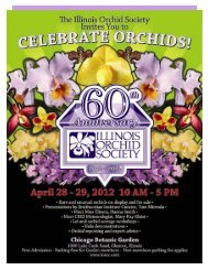 Apr - The Illinois Orchid Society