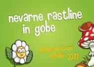 Nevarne rastline in gobe - Ljubljana