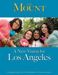 A New Vision for - Mount St. Mary's College