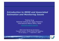 02 - Introduction to REDD and associated estimation ... - DPI - Inpe