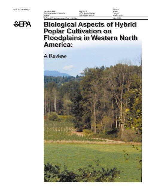 Biological Aspects of Hybrid Poplar Cultivation on Floodplains in ...