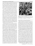 Large-Scale Synthesis of Single-Crystalline Iron Oxide Magnetic ... - Page 6