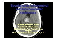 Spontaneous intracerebral and intracerebella and intracerebellar ...