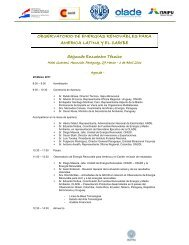Download agenda - Observatory for Renewable Energy in Latin ...