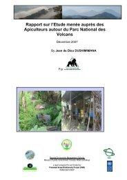 IGCP.Rapport sur l'apiculture. - REMA