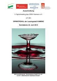 Ausschreibung 3. Sprintmeeting des OSSV Kamenz e.V. ... - 1dsg.de