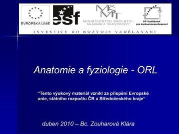 ORL-anatomie a fyziologie