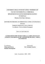 FedOA - Università degli Studi di Napoli Federico II