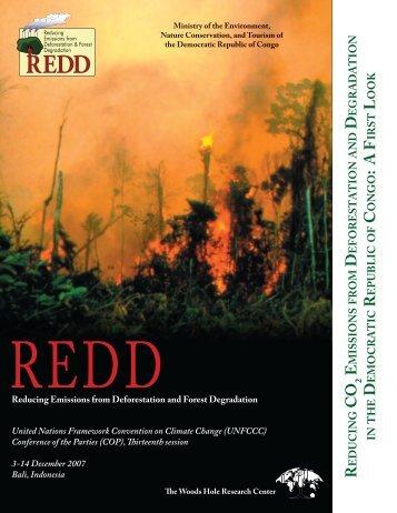 REDD in the Democratic Republic of Congo (PDF) - Woods Hole ...