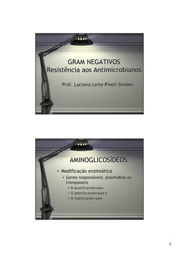 GRAM NEGATIVOS Resistência aos Antimicrobianos GRAM ... - Ucg