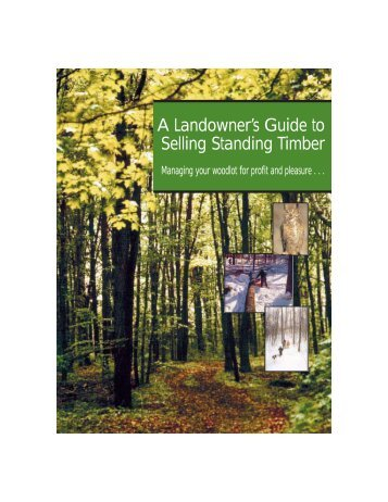 A Landowner's Guide to Selling Standing Timber - the Ontario ...