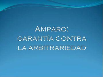 Amparo, garantía contra la arbitrariedad, Marlon Barahona