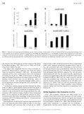View - ScienceDirect - Page 6