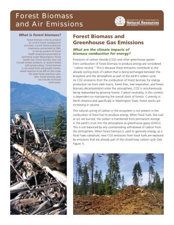 Forest Biomass and Air Emissions - Biomass Thermal Energy Council