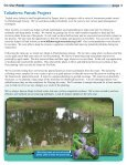 Adopt-A-Pond Newsletter - Spring 2013 - Hillsborough County ... - Page 3