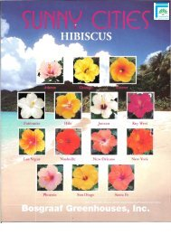 Sunny Cities Hibiscus - Info Sheet (PDF) - ForemostCo