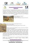 Descargar el reporte en formato PDF - Aves Argentinas - Page 7