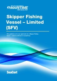 New Zealand Offshore Master MNZ Guidelines - Maritime New ...