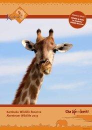 Abenteuer Wildlife 2013 - Kambaku Safari Lodge in Namibia