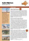 Kambaku Wildlife Reserve - Seite 3