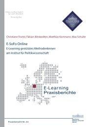 Praxisbericht 33 - ERCIS - European Research Center for ...