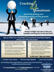 Coaching for Consultants page - Plus Delta Consulting