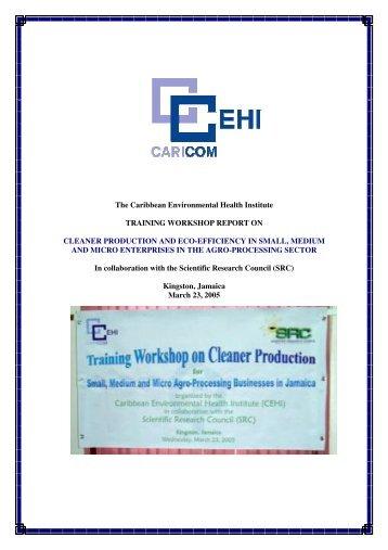 Jamaica - Caribbean Environmental Health Institute