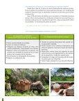 De Las Alianzas Productivas a los Negocios Inclusivos - Mapeo de ... - Page 6