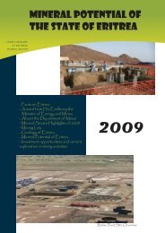 MINES 2009-center.indd - Embassy of The State of Eritrea