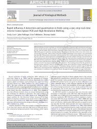 Rapid influenza A detection and quantitation in birds using a one ...
